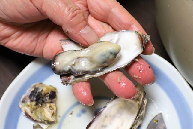 殻を開けた蒸し牡蠣を手に持っているところ
