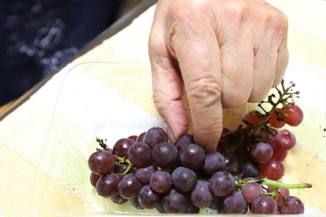 ブドウをつまむ祖母(おばあ)