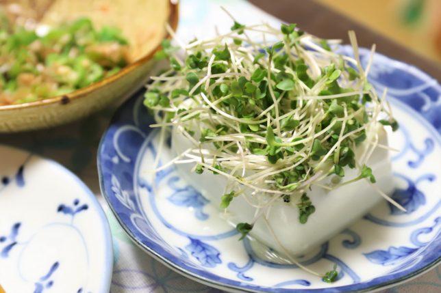 スプラウトを乗せた枝豆豆腐