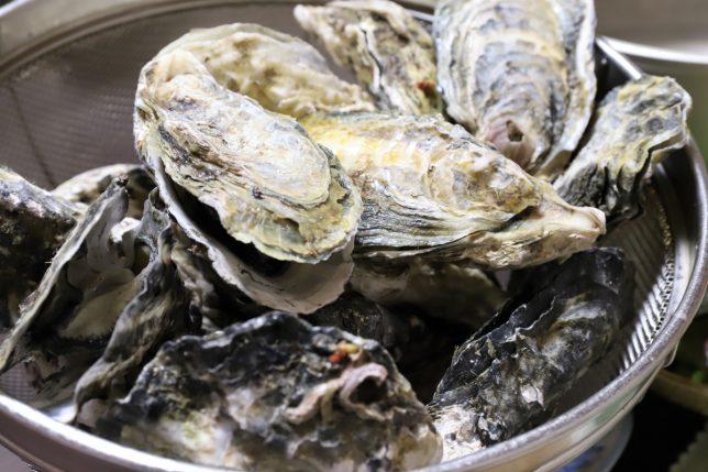 殻付きの蒸し牡蠣