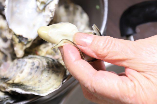 蒸し牡蠣を指でつまんでいるところ
