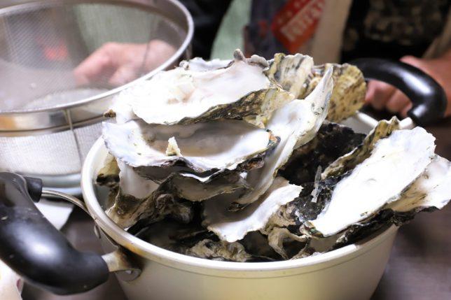 空になった牡蠣の殻が、積み重なっているところ