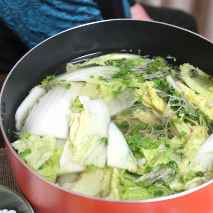 鍋に入った白菜とカイワレ大根の水炊き