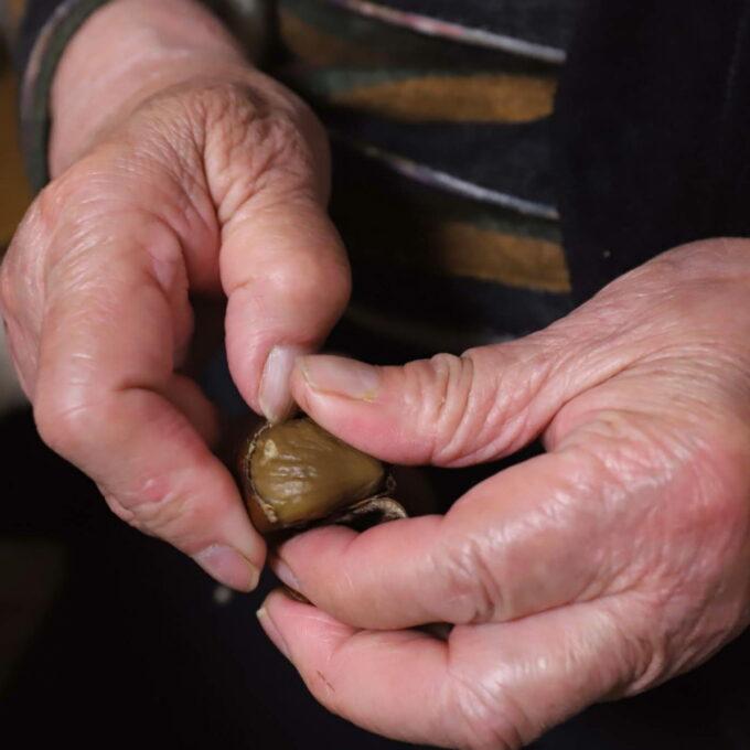 天津甘栗の皮をむいている祖母(おばあ)の手