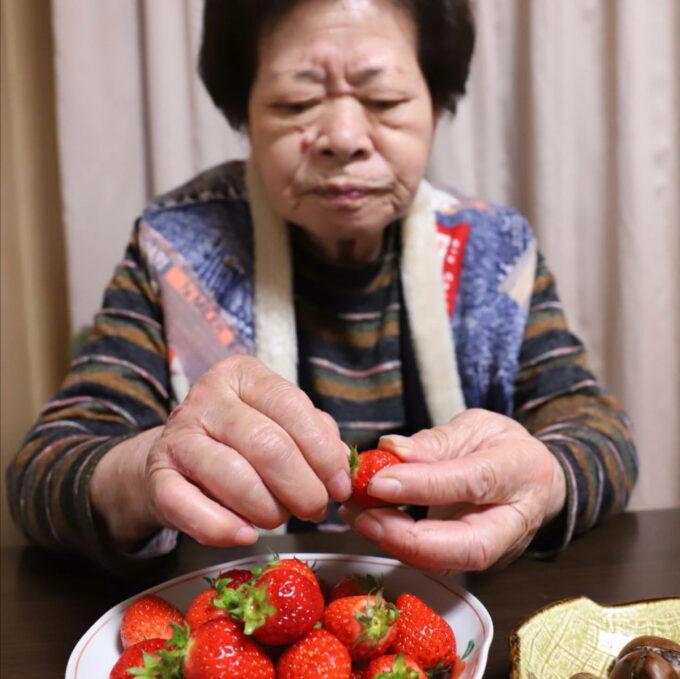 イチゴのヘタを両手でとっている祖母(おばあ)