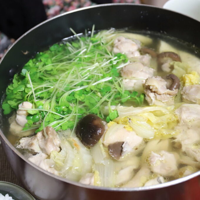 祖母(おばあ)が作った水炊きの鍋の中身