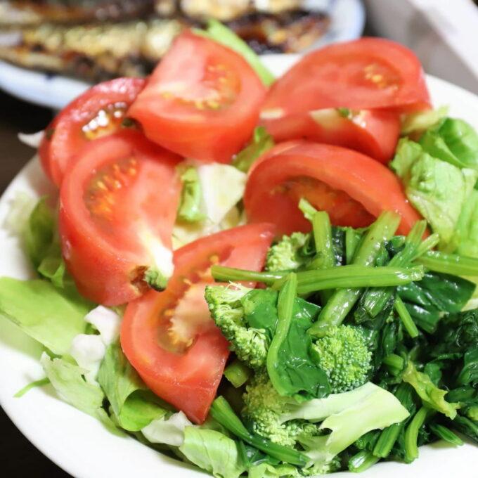 トマトやキャベツ、茹でほうれん草、生ブロッコリーの野菜サラダ