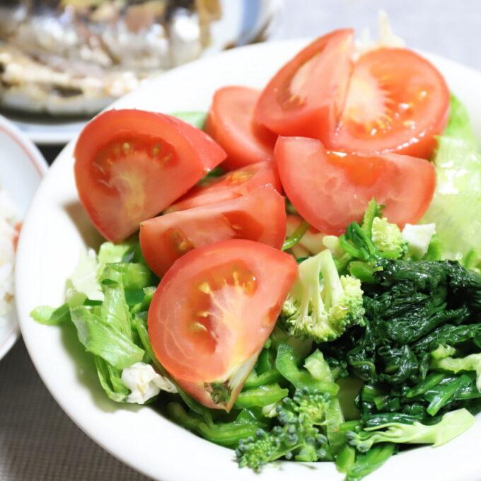 トマトや生ブロッコリー、茹でほうれん草などを皿に盛りつけた野菜サラダ