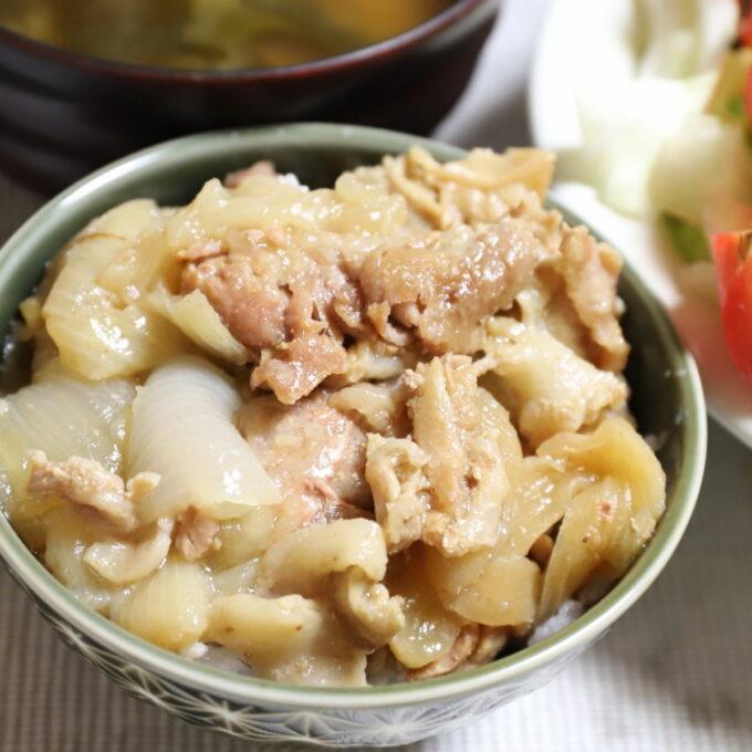 豚肉と玉ねぎを炊いたものをごはんに乗せた豚丼