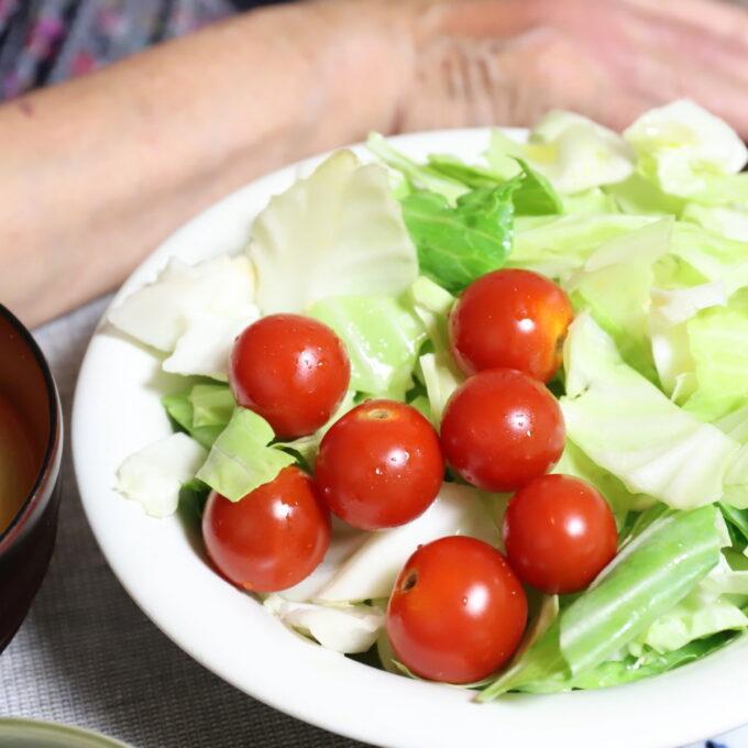 皿に盛りつけミニトマトを乗せたサラダ